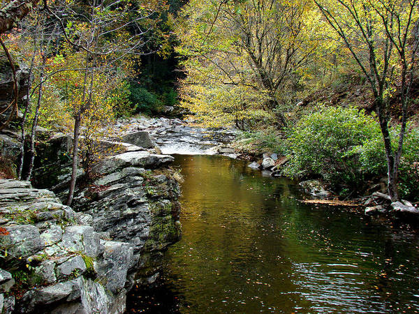 Creek Print featuring the photograph Smoky Mountian River by Sandy Keeton