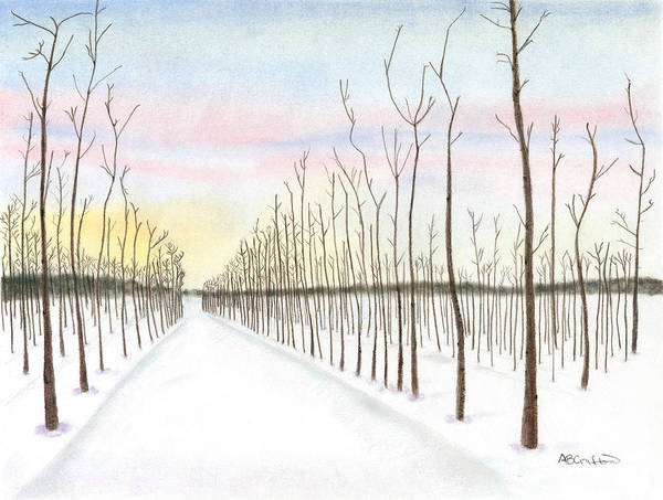 Winter Art Print featuring the drawing Snowy Lane by Arlene Crafton