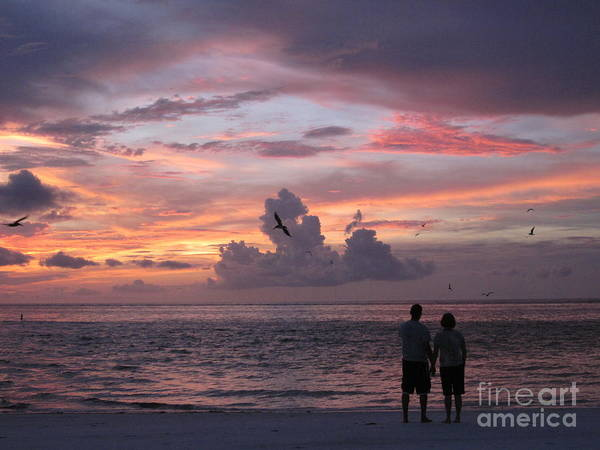 Anna Maria Island Art Print featuring the photograph Soaring by Elizabeth Carr