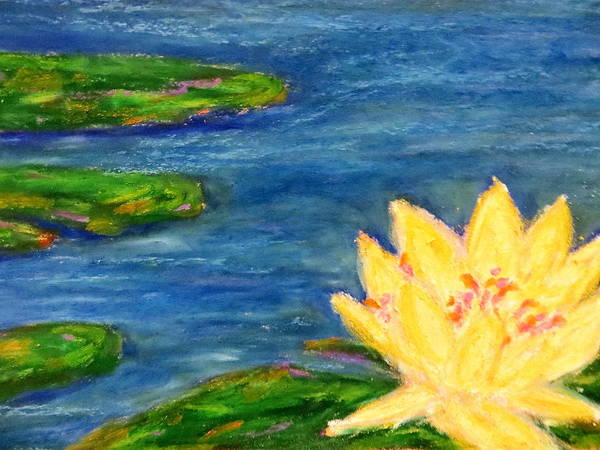Aquatic Marsh Water Saltwater Color Immpressionist Style Simple Colors Yellow Pink Red Green Lillies Oil Pastel Art Print featuring the pastel Sparking Lillies by Daniel Dubinsky