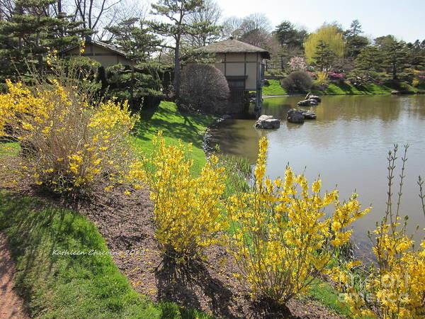 Japanese Gardens Art Print featuring the photograph Springtime At The Japanese Gardens by Kathie Chicoine