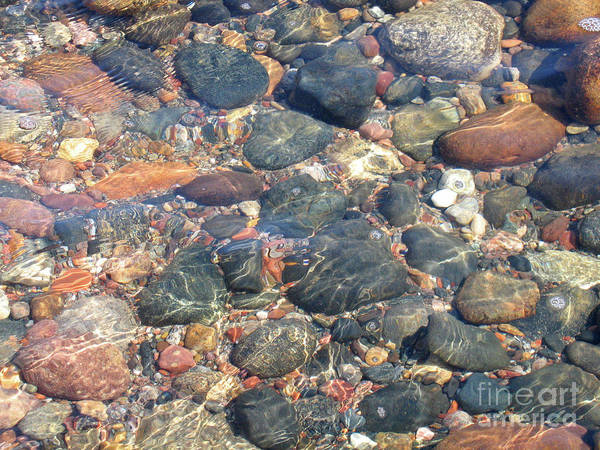 Stones Art Print featuring the photograph Stony Beauty by Ann Horn