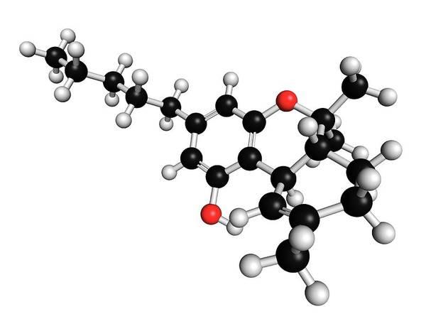 Thc Art Print featuring the photograph Thc Cannabis Drug Molecule by Molekuul