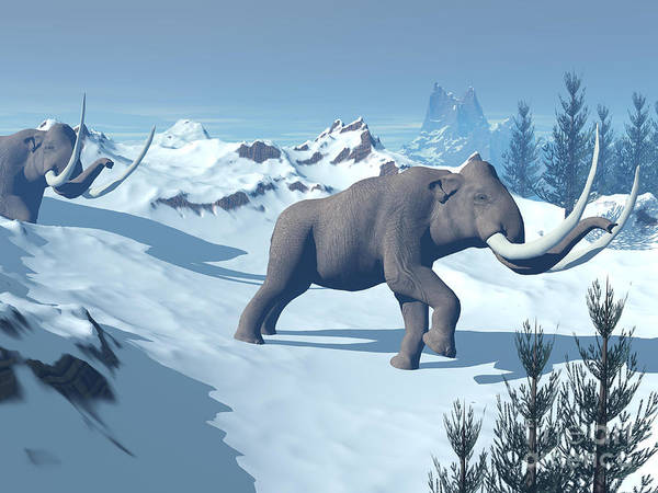 Three Dimensional Art Print featuring the digital art Two Large Mammoths Walking Slowly by Elena Duvernay