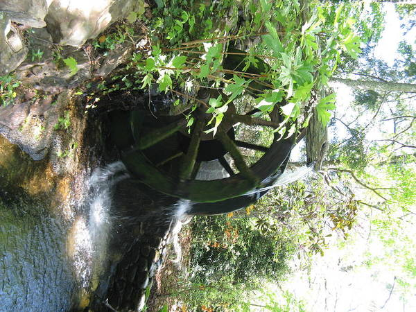 Waterwheel Art Print featuring the photograph Water In Motion by Michael Knight