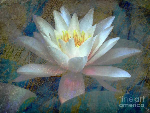 Lotus Art Print featuring the digital art Water Lily by Irina Hays