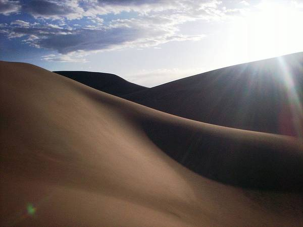 Sand Art Print featuring the photograph Windblown Curves by Carlee Ojeda