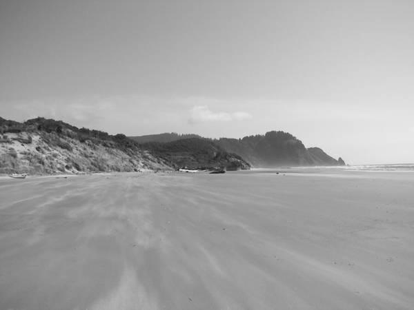 Beach Art Print featuring the photograph Windy Beach by Mel Duncan