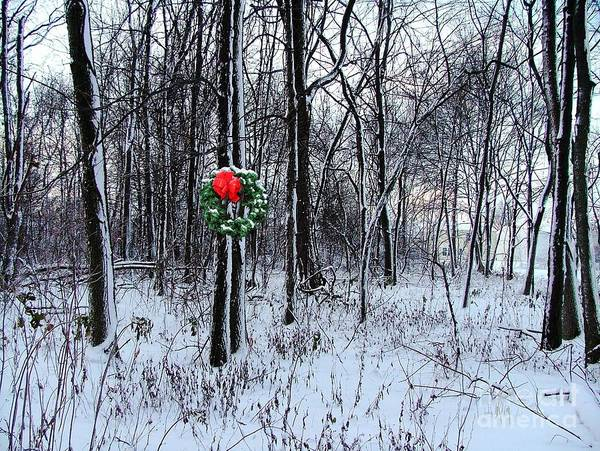 Art Print featuring the photograph Tyra's Woods At Christmas by Julie Dant