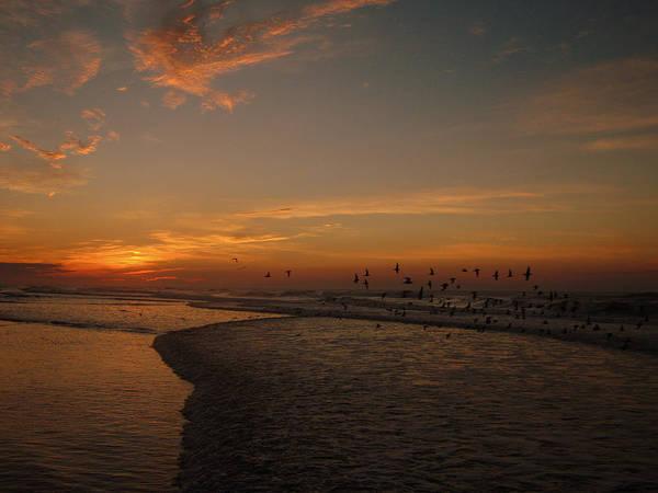 Birds Over Ocean Art Print featuring the photograph Ocean Sunrise by Mary McCusker