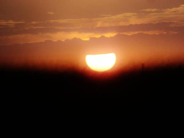 Sun Art Print featuring the photograph Sunset by Morgan Fleener