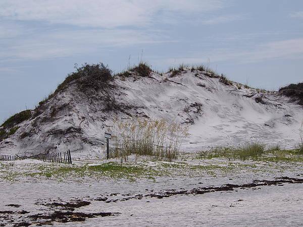 Beach Art Print featuring the photograph Beach Sand Dunes by Judge Howell