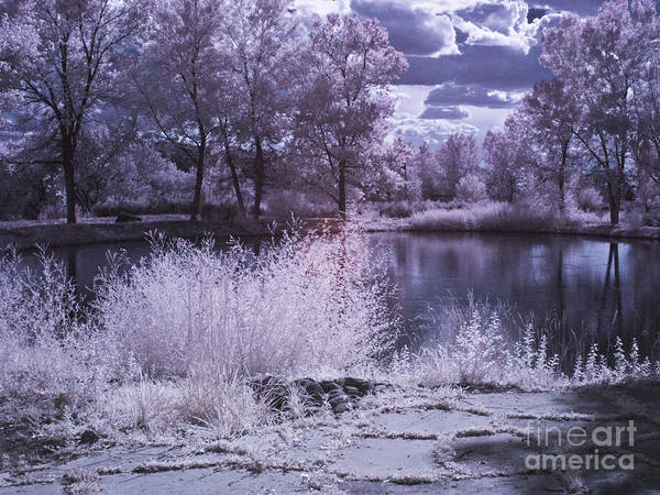 Infrared Art Print featuring the photograph A Place Of Dreams by Eileen Mandell