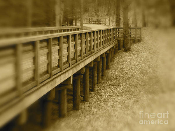 Walk Art Print featuring the photograph A Walk In Time by Cheryl Butler