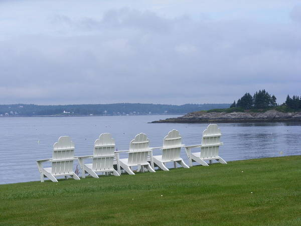 Maine Art Print featuring the photograph All In A Row In Maine by Carol Bruno