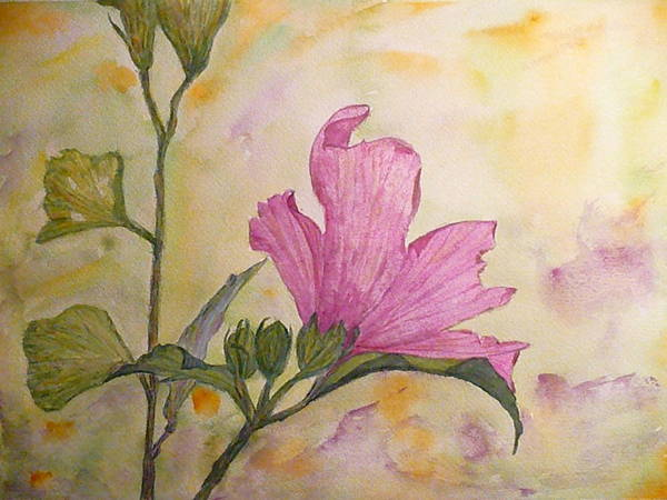 Althea Art Print featuring the painting Althea by Stella Schaefer