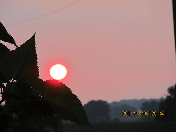 Sun Art Print featuring the photograph August 6 Sunset by Tina M Wenger