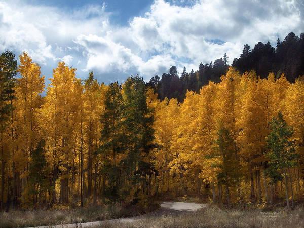 Autumn Photo Art Print featuring the mixed media Autumn Splendor by Carol Cavalaris
