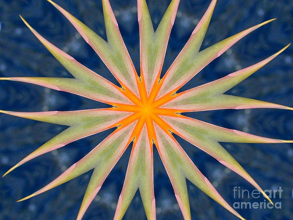 Kaleidoscope Art Print featuring the photograph Bird Of Paradise by Mark Gilman