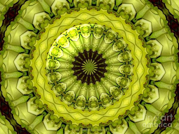 Yellow Roses Art Print featuring the photograph Bouquet Of Roses Kaleidoscope 11 by Rose Santuci-Sofranko