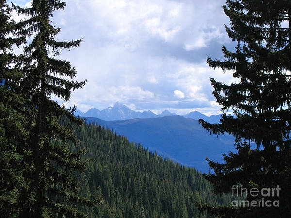 Canadian Rockies Art Print featuring the photograph Canadian Rockies by Kim Frank