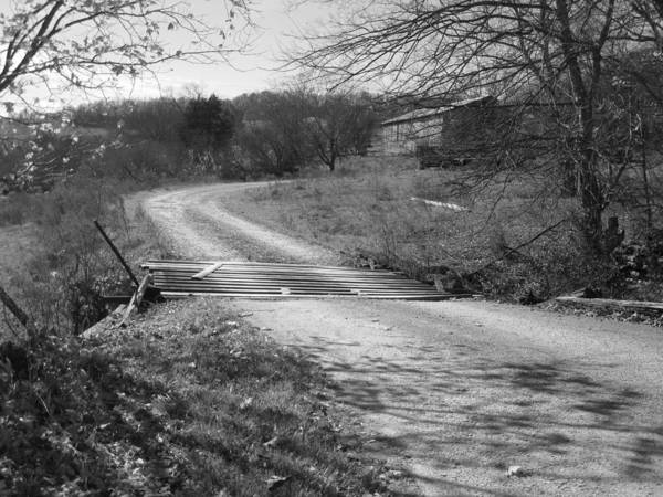 Art Print featuring the photograph Country Roads Bw by Tami Newcomb