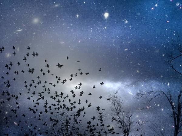 Stars Art Print featuring the digital art The Night Was Electrically Charged by Gothicrow Images