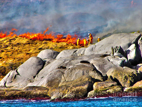 Fire Print featuring the photograph Elements by Joanne Kocwin