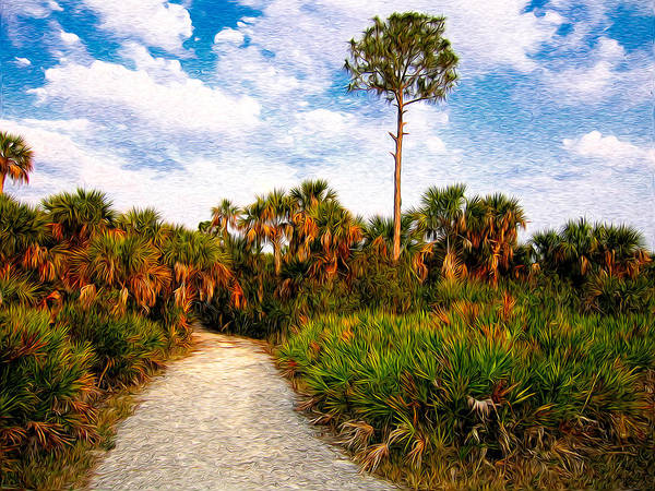Palm Art Print featuring the photograph Feels Like Home by Rich Leighton