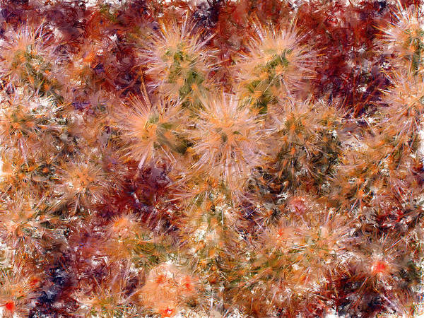 Fireworks Print featuring the digital art Fireworks Explosion by Marilyn Sholin
