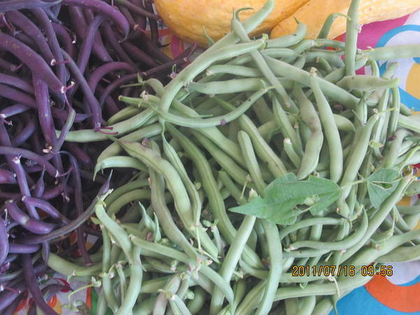 Art Print featuring the photograph Green And Purple Beans by Tina M Wenger