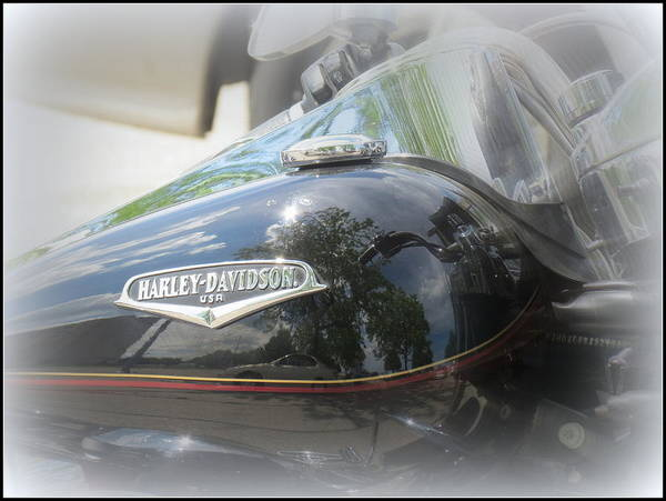 Harley Davidson Art Print featuring the photograph Harley Davidson Emblem by Kay Novy