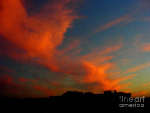 Sunset Art Print featuring the photograph June 29 2010 by Mark Gilman