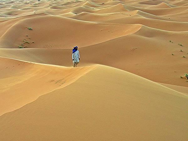 Sahara Desert Art Print featuring the photograph Knee Deep by David Rich