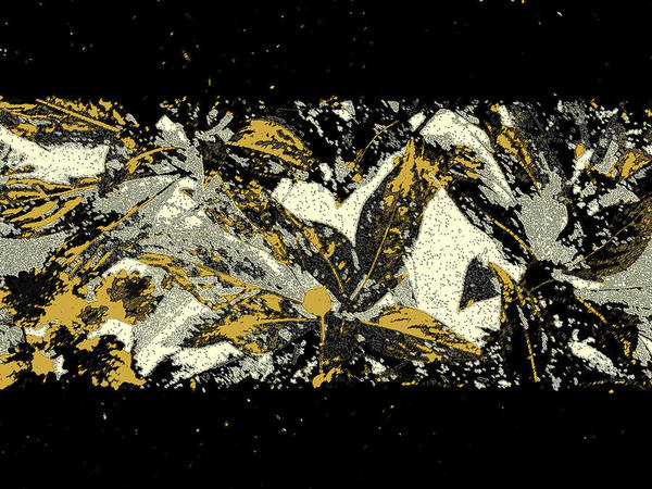Leaf Art Print featuring the photograph Leaves Of Gold by Katharine Birkett