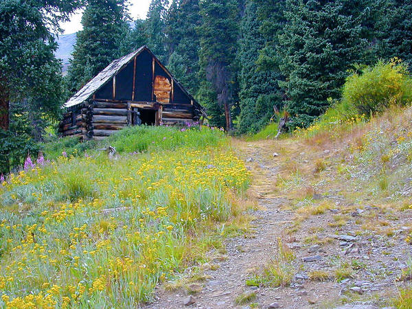 Cabin Art Print featuring the photograph Miners Cabin by Walt Jackson