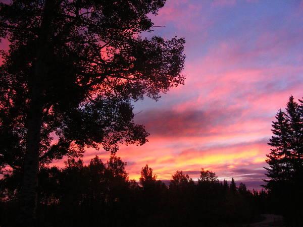 Sky Art Print featuring the photograph Morning Light by Jennifer Kelley