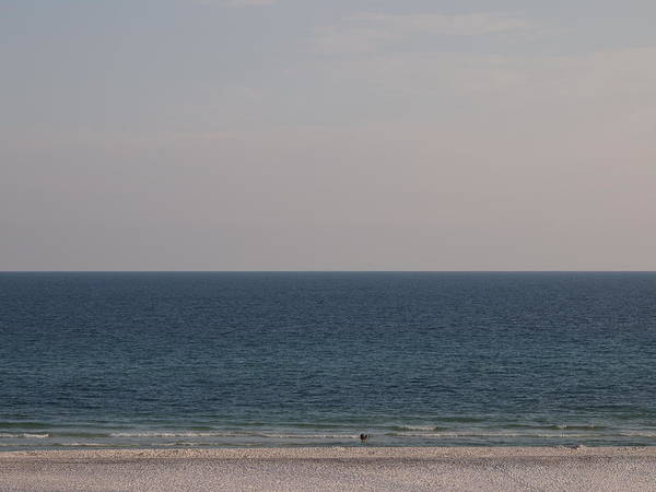 Beach Art Print featuring the photograph Ocean by Judge Howell