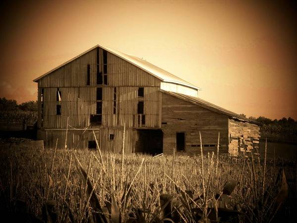 Barn Art Print featuring the photograph Old Barn In Indiana by Joyce Kimble Smith