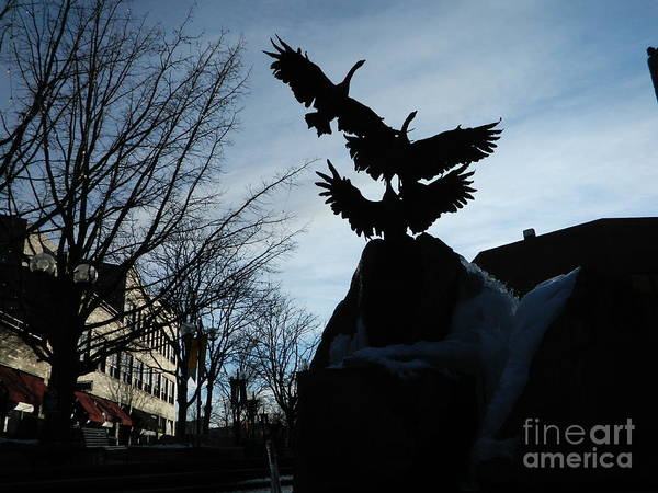 Fort Collins Art Print featuring the photograph Old Town Silhouette by Sara Mayer