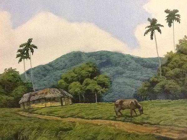 Cuban Landscape Art Print featuring the painting Peaceful Surroundings by Carlos Rodriguez Yorde