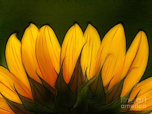 Sunflower Art Print featuring the digital art Petales De Soleil - A12 by Variance Collections