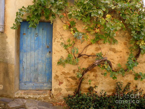 Door Print featuring the photograph Provence Door 5 by Lainie Wrightson