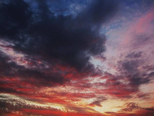 Sky Art Print featuring the photograph Rainbow Sky by Todd Sherlock