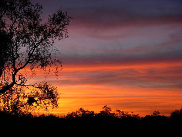 Sunrise Art Print featuring the photograph Red Sky In The Morning by Kendra Hunt
