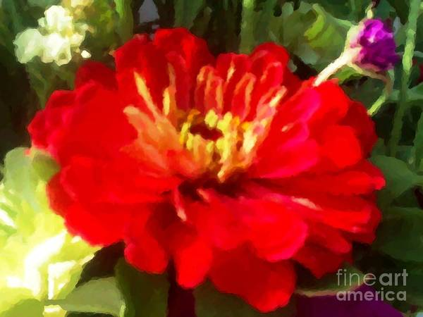 Art Print featuring the digital art Red Zinnia by Denise Dempsey Kane