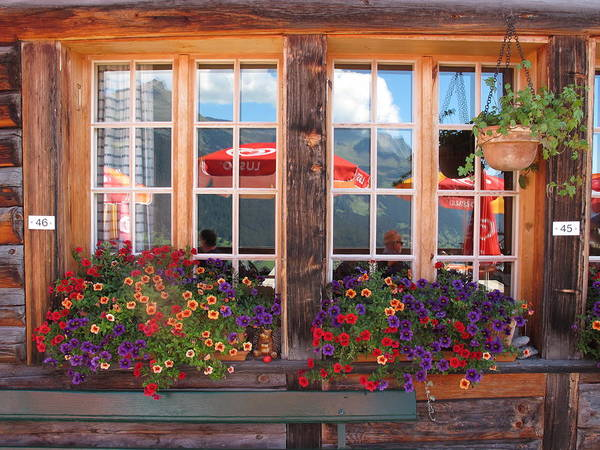 Windows Art Print featuring the photograph Reflections Of Switzerland by Mary Ellen Mueller Legault