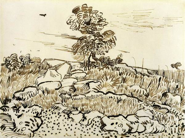 Rocky Print featuring the painting Rocky Ground At Montmajour by Vincent van Gogh