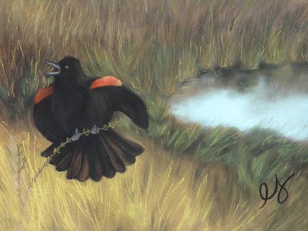 Blackbird Art Print featuring the pastel Show-off by Estephy Sabin Figueroa