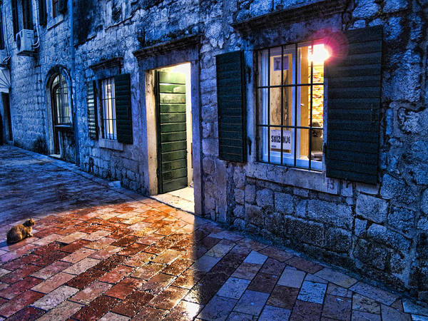 Cat Print featuring the photograph Street Scene In Ancient Kotor Montenegro by David Smith